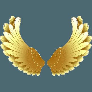 wensen kan vleugels geven