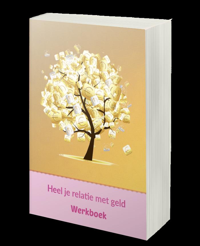 werkboek geldcursus